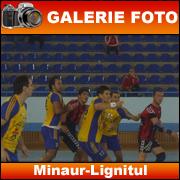 foto_minaur